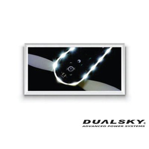 [DUALSKY] H-LED, Red, Large(10pcs) for HORNET 460